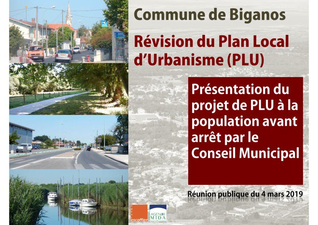 thumbnail of BGNS Réunion publique PLU 04 03 2019D