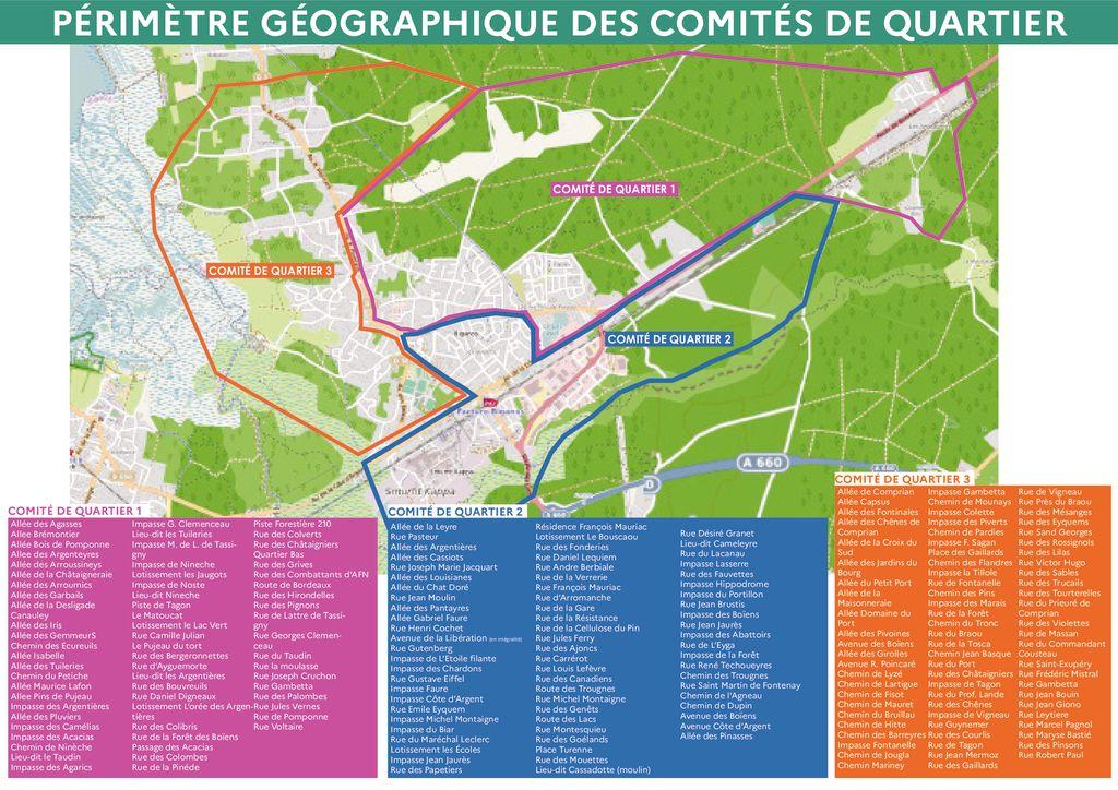 thumbnail of 2 PERIMETRE GEOGRAPHIQUE COMITES DE QUARTIER